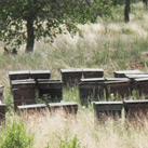 Beekeeping Base